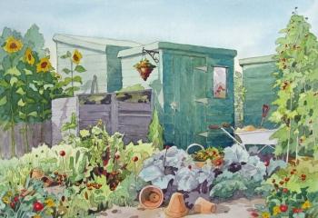 Allotments - Pen & Watercolour - 25cm x 35cm