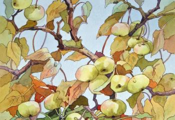 Crabapple and Mistletoe - Pen & Watercolour - 35cm x 25cm