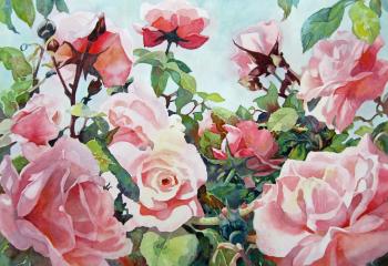 Rose Arbour - Watercolour - 35cm x 50cm