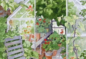 The greenhouse - Pen and Watercolour - 35cm x 25cm