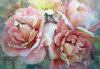 Roses - Watercolour - 20cm x 20cm - SOLD